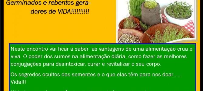 Workshop de Alimentação Crua e Viva